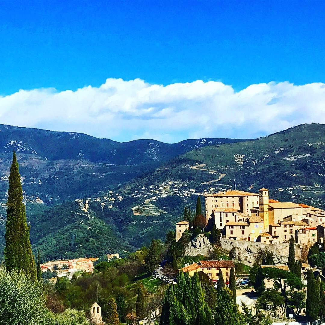 huile d'olive carros village